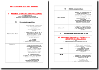Physiopathologie des anémies
