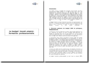 Le budget travail-emploi-formation professionnelle