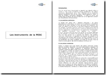 Les instruments de la PESC