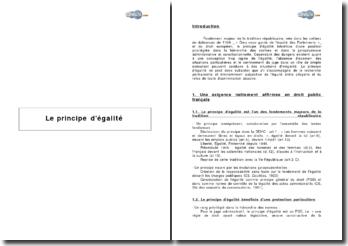 Le principe d'égalité et sa mise en oeuvre (2003)