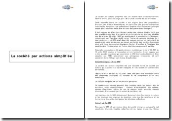 Caractéristiques et fonctionnement de la société par actions simplifiée (2003)