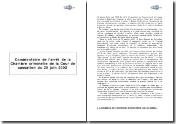 Commentaire de l'arrêt de la Chambre criminelle de la Cour de cassation du 25 juin 2002
