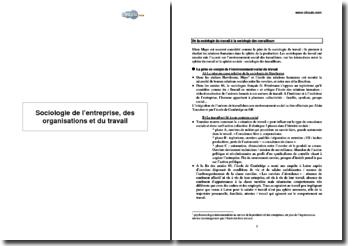Sociologie de l'entreprise, des organisations et du travail