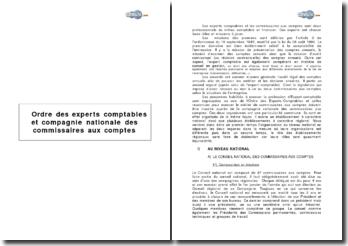 Ordre des experts comptables et compagnie nationale des commissaires aux comptes