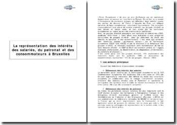 La représentation des intérêts des salariés, du patronat et des consommateurs à Bruxelles