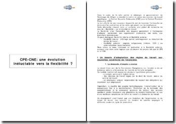 CPE-CNE : une évolution inéluctable vers la flexibilité ?