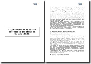La jurisprudence de la cour européenne des droits de l'homme (CEDH)