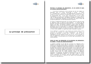 Le principe de précaution et la justification du protectionnisme
