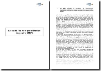 Le traité de non-prolifération nucléaire (TNP)