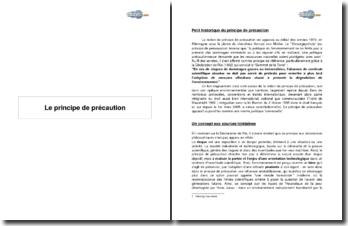 Le principe de précaution, nouvelle norme juridique universelle