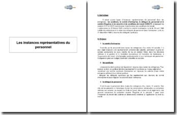 Les instances représentatives du personnel (2008) - définition, enjeux et convictions