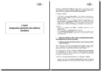 L'IGAS (Inspection générale des affaires sociales)