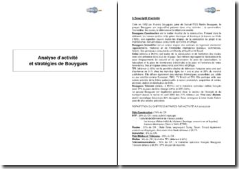 Analyse d'activité et stratégies de Bouygues (2008)