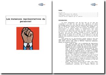 Les instances représentatives du personnel (2009) - stratégie des syndicats et moyens d'action