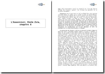 L'Assommoir, Emile Zola, chapitre X