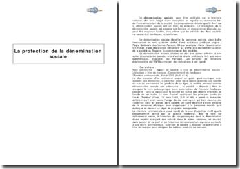 La protection de la dénomination sociale : définition et cas pratique