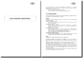 Les muscles pectoraux