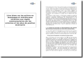 Livre blanc sur les actions en dommages et intérêts pour infraction aux règles communautaires sur les ententes et les abus de position dominante