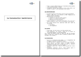 La transduction bactérienne
