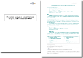 Document unique de prévention des risques professionnels (DUPRP)