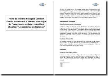 François Dubet et Danilo Martuccelli, A l'école, sociologie de l'expérience scolaire, cinquième chapitre : L'expérience collégienne