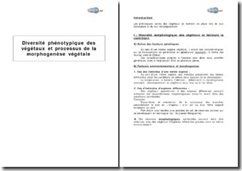 Diversité phénotypique des végétaux et processus de la morphogenèse végétale