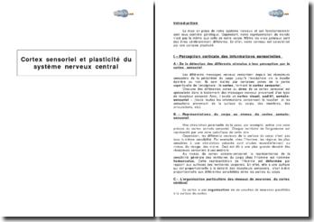 Cortex sensoriel et plasticité du système nerveux central