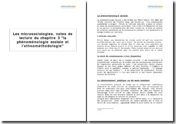 Les microsociologies, de Georges Lapassade, chapitre 3 la phénoménologie sociale et l'ethnométhodologie