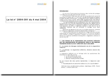 La loi nº 2004-391 du 4 mai 2004