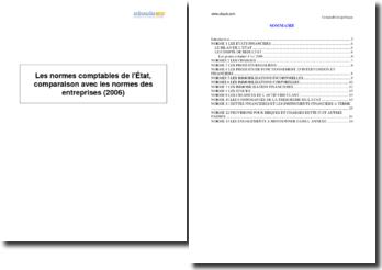 Les normes comptables de l'État, comparaison avec les normes des entreprises (2006)