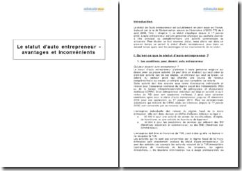 Le statut d'auto entrepreneur - avantages et inconvénients
