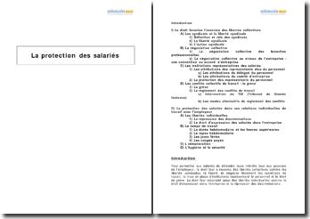 La protection des salariés et les libertés collectives (2009)