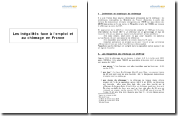 Les inégalités face à l'emploi et au chômage en France