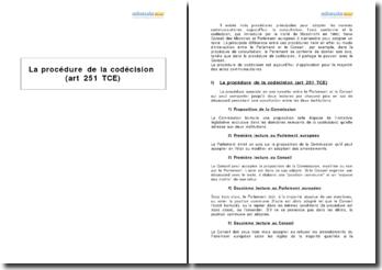 La procédure de la codécision (art 251 TCE)