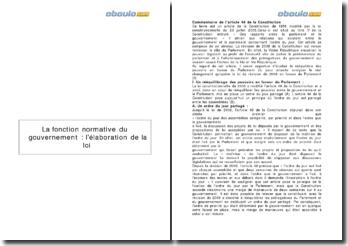 L'article 48 de la Constitution - la fonction normative du gouvernement dans l'élaboration de la loi