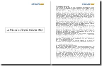 Le Tribunal de Grande Instance (TGI): compétences et organisation