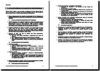 Le Conseil constitutionnel et les droits fondamentaux