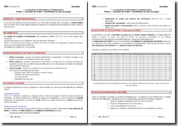 Le Système d'Information et d'Organisation : conduite, planification et conduite de projet