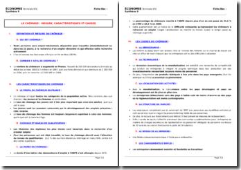 Le chômage : mesures, caractéristiques et causes