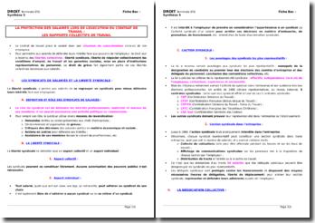 La protection des salariés lors de l'exécution du contrat de travail : les rapports collectifs de travail