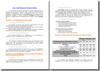Les institutions financières : les établissements de crédit et les Organismes de Placement Collectif en Valeurs Mobilières