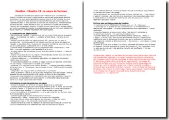 Voltaire, Candide, Chapitre 19 (commentaire composé)
