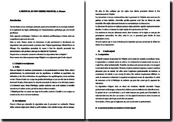 L'hopital et son ordre négocié : lecture de l'article de Strauss