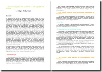 Voltaire, Candide, Chapitre 19, le nègre de Surinam