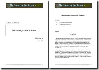 Voltaire, Micromégas, Chapitre 6