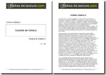 Voltaire, Candide, Chapitre 5