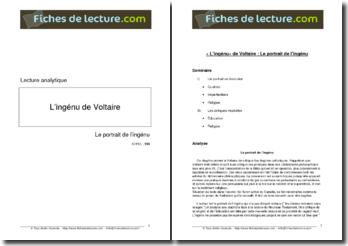 Voltaire, L'Ingénu, Le portrait de l'Ingénu