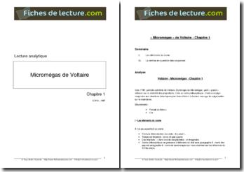 Voltaire, Micromégas, Chapitre 1