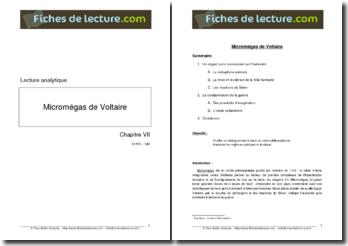 Voltaire, Micromégas : Chapitre VII