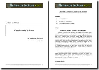 Voltaire, Candide, Le nègre du Surinam